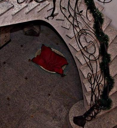 profesjonalne schody z kamienia